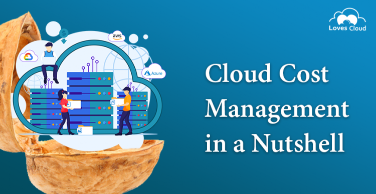 Cloud Cost Management in a Nutshell